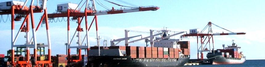 苫小牧港外貿コンテナ事業協同組合|航路・入港情報